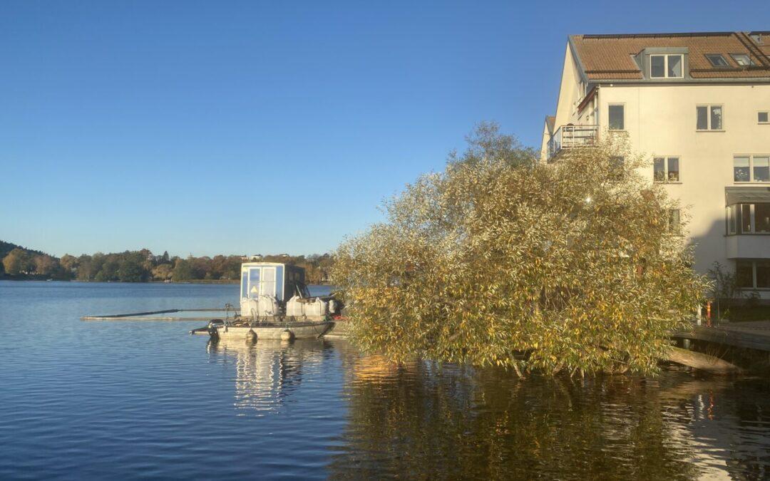 Status: Reparation av bryggans och husens pålars is- och rostskydd